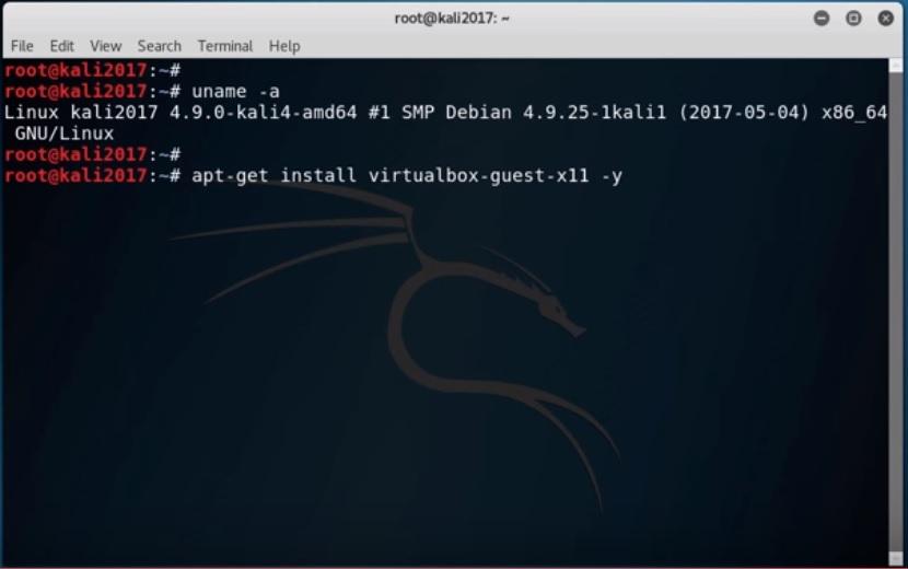 Kali Linux terminal - Install Virtualbox Guest command screenshot