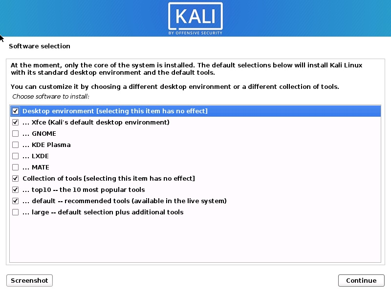 Kali Linux 2020 installation - Software selection