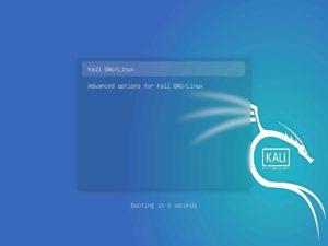 Kali Linux - Grub loader