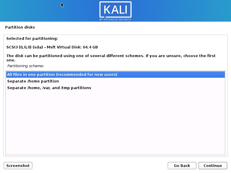 Install Kali Linux 2020 - Disk Partitioning Scheme Screenshot