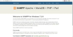 XAMPP localhost in Browser