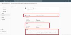Google Search Console - URL Inspect
