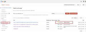 Google Webmasters Tool - Fetch page as Google
