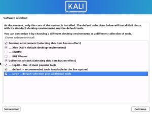 Kali Linux 2021 installation - Software selection